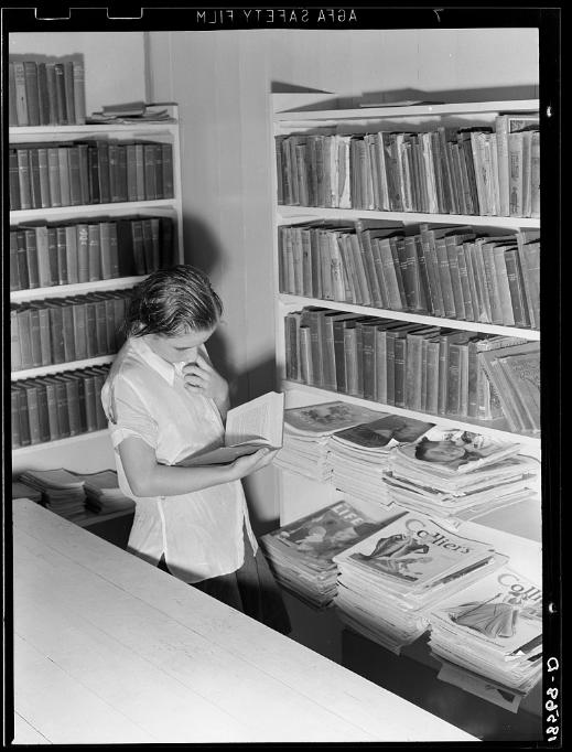 barbara fister – librarian, writer, friendly curmudgeon